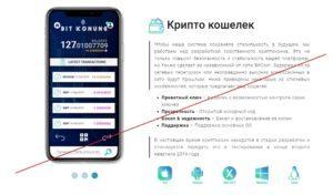 Компания-bit-konug-–-обзор-и-отзывы-о-проекте-bitkonung.com