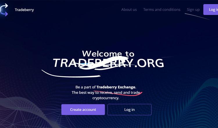 Отзыв-о-tradeberry